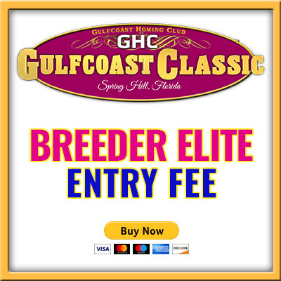 Breeder Elite Entry B