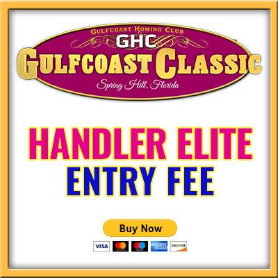 Handler Elite Entry B